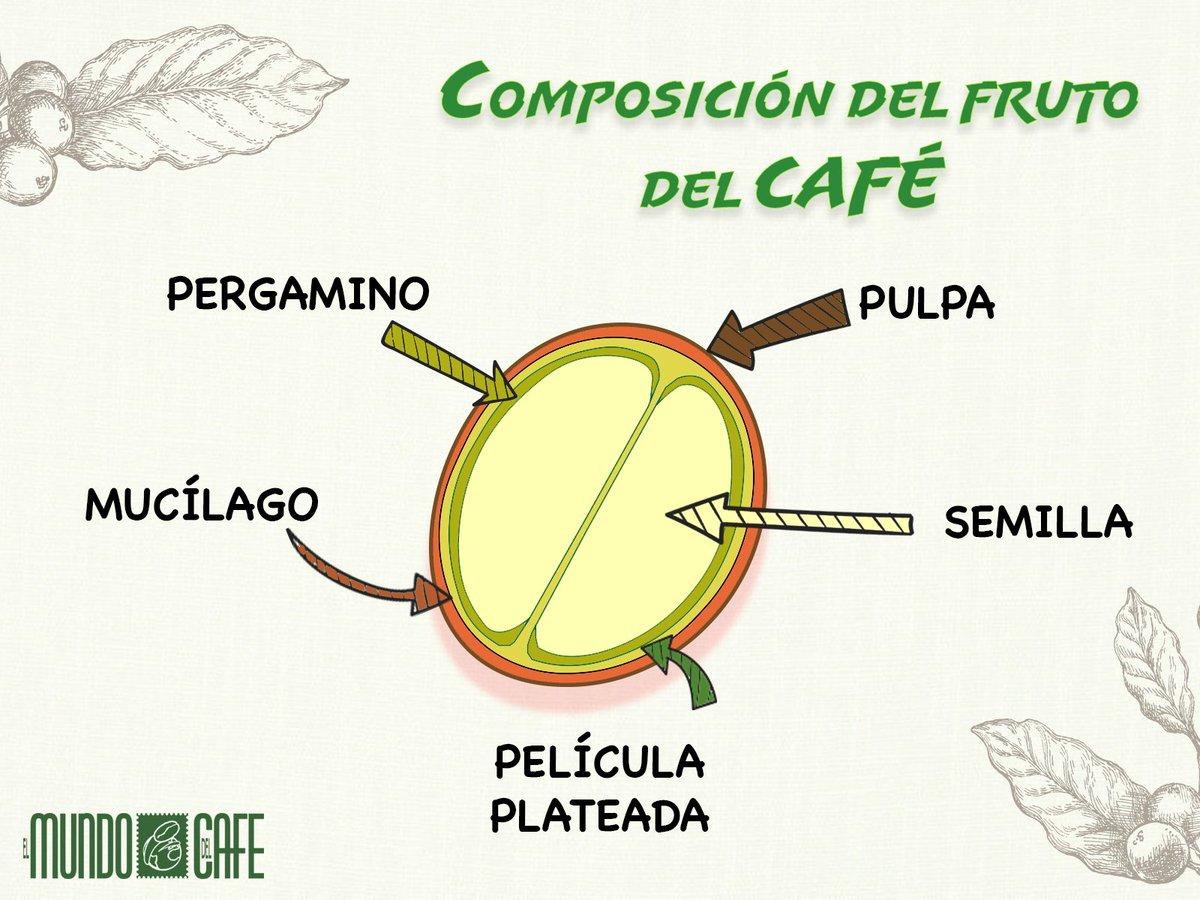 El Mundo del Café's photo on #FelizJueves
