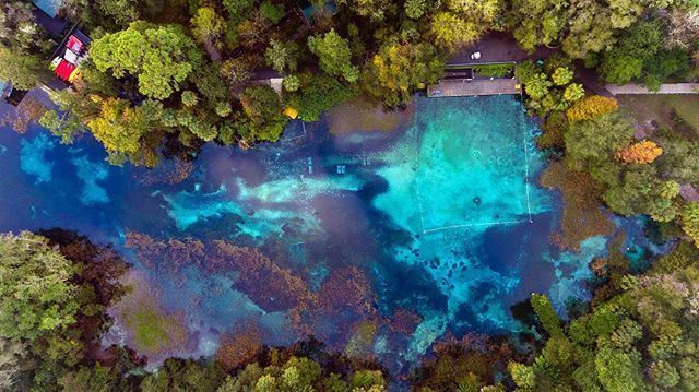 Where the water's 72°F in any season. #LoveFL . : Rainbow Springs State Park  http:// bit.ly/2RUHTyq  &nbsp;  <br>http://pic.twitter.com/hFlrjNF1kn