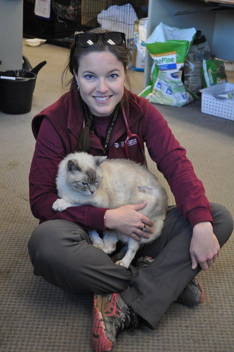 Aggie vet holding a cat
