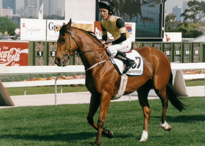 #FlashbackFriday to a young Damien Oliver riding Dane Ripper to win the 1997 Cox Plate #Legendary Photo