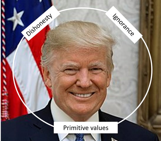Trump is dangerous for many reasons, among which: 1)  his primitive authoritarian values, 2) his consistent dishonesty, 3) his lack of understanding and knowledge of the basics of economy and policy.  He should have been impeached by now.   #ImpeachTrumpNow