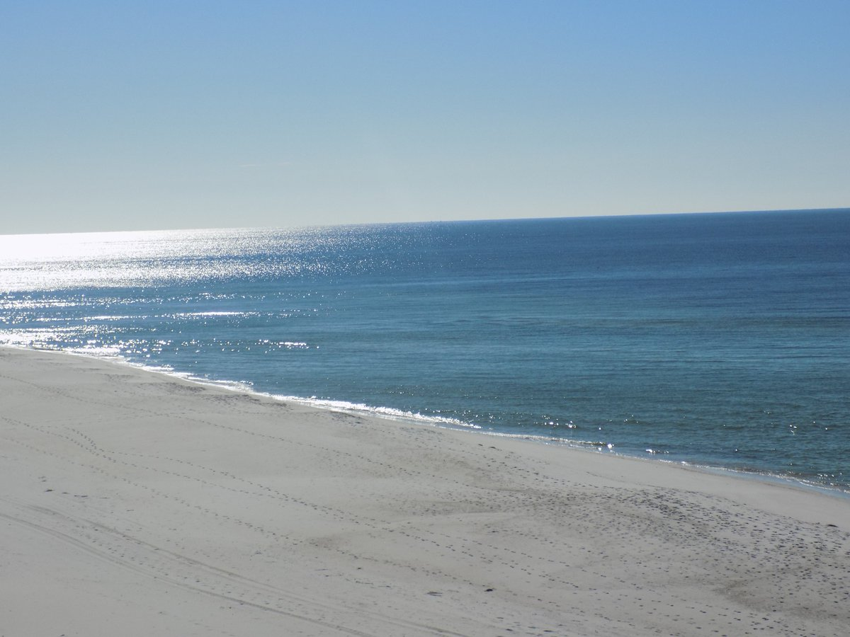 Call today to reserve your summer family vacation 800-354-1112 #Beachlover #vacation #PanamaCityBeach #familytime<br>http://pic.twitter.com/tGn3DwcC1D