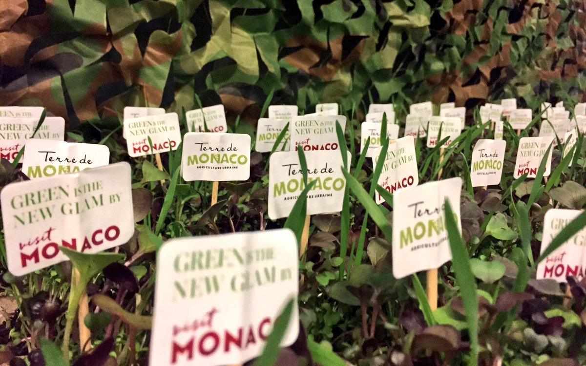 """An amazing, unexpected location, organic food and natural decoration  for the launch of #GreenIsTheNewGlam 's season 2. Bravo @VisitMonaco ! Watch the new campaign """"locavore j'adore"""" here: https://t.co/ir8ilztSdw"""
