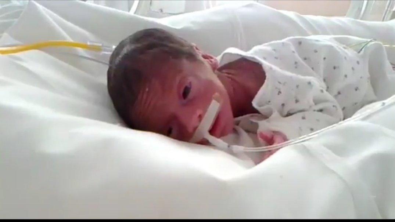 imagenes de bebe de 6 meses de gestacion