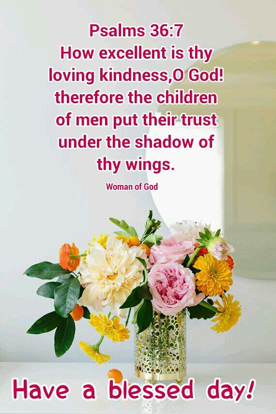 Psalm 36:7  How excellent is thy lovingkindness O God! therefore the children of men put their trust under the shadow of thy wings. 8. They shall be abundantly satisfied with the fatness of thy house; &amp; thou shalt make them drink of the river of thy pleasures <br>http://pic.twitter.com/two2ypUI7Y