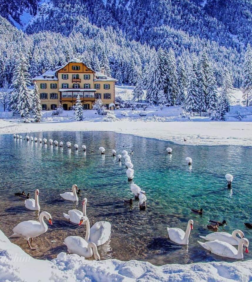 Happy Weekend everyone. Lake Dobbiaco. Italy. <br>http://pic.twitter.com/7bRkoRSLIR