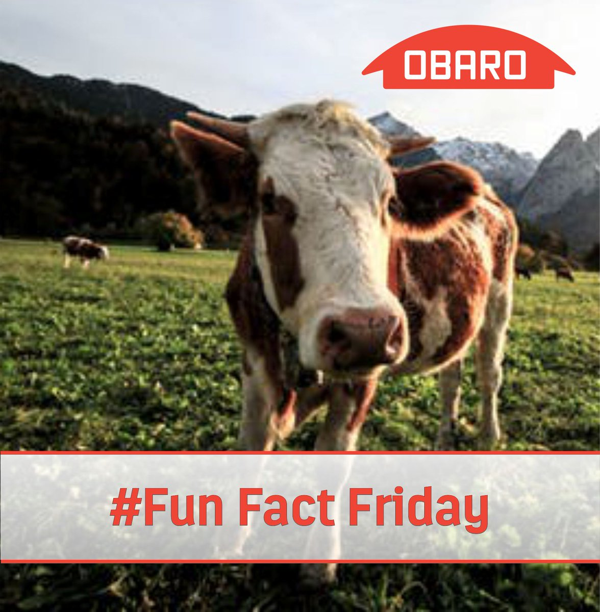 Obaro Group's photo on #FunFactFriday