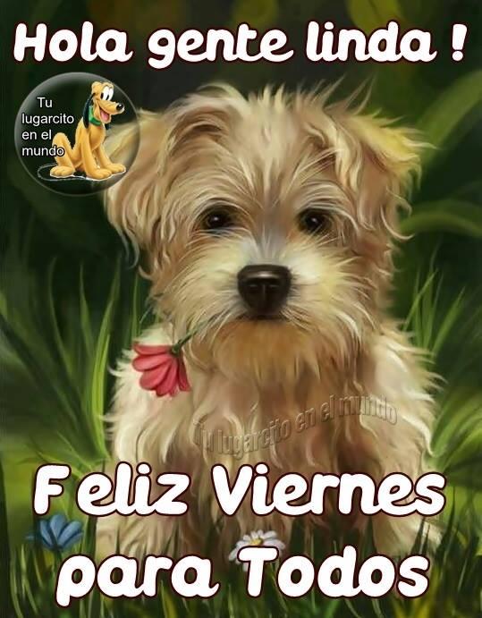 """Saludo Al Alma on Twitter: """"#FelizDía para todos!! Siempre con Dios, que  hoy sea un excelente día para disfrutar de las personas que nos acompañan  en este caminar, somos amor y eso"""
