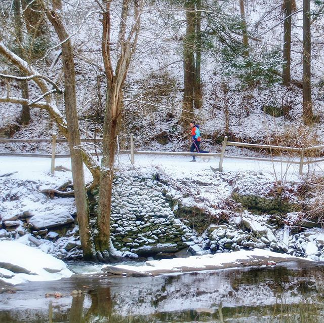 Stand out from the background and you will go far... 🏆🥇🏆 #running #runner #runners #fitness #fitnessmotivation #motivation #snow #nature #naturephotography #forbiddendrive #trail #wissahickon #wissahickonpark #wissahickontrail #igers_philly #howphill… http://bit.ly/2DiXX4V