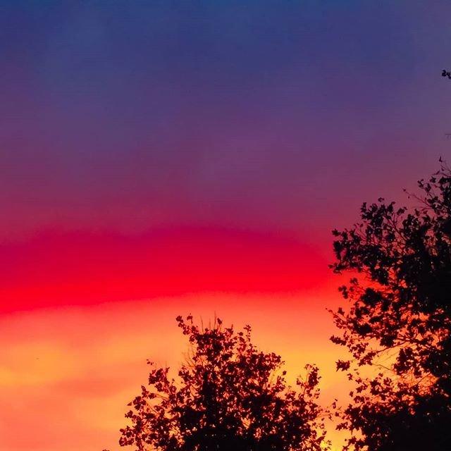 Reposting @natureducky82: The beautiful sunset I encountered last night 😊. #sunset #sunsets #sky #skyphotography #sunsetshots #nature #naturephotography #naturelovers #naturephotos
