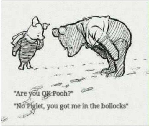 #WinnieThePoohDay 😂😂😂