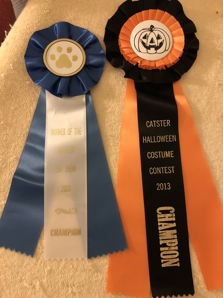 #FlashbackFriday Found Dixie's Cat Show ribbon and Sonny's Halloween ribbon for winning #Catster contests in 2013. @kat3796  @planetpakua @TiffyLaw3 @Miss_1999 @RoodJood @Cecinatrix @BlaineRincon @LilithTheCat999 @welliver_titus @SpiessensVicky