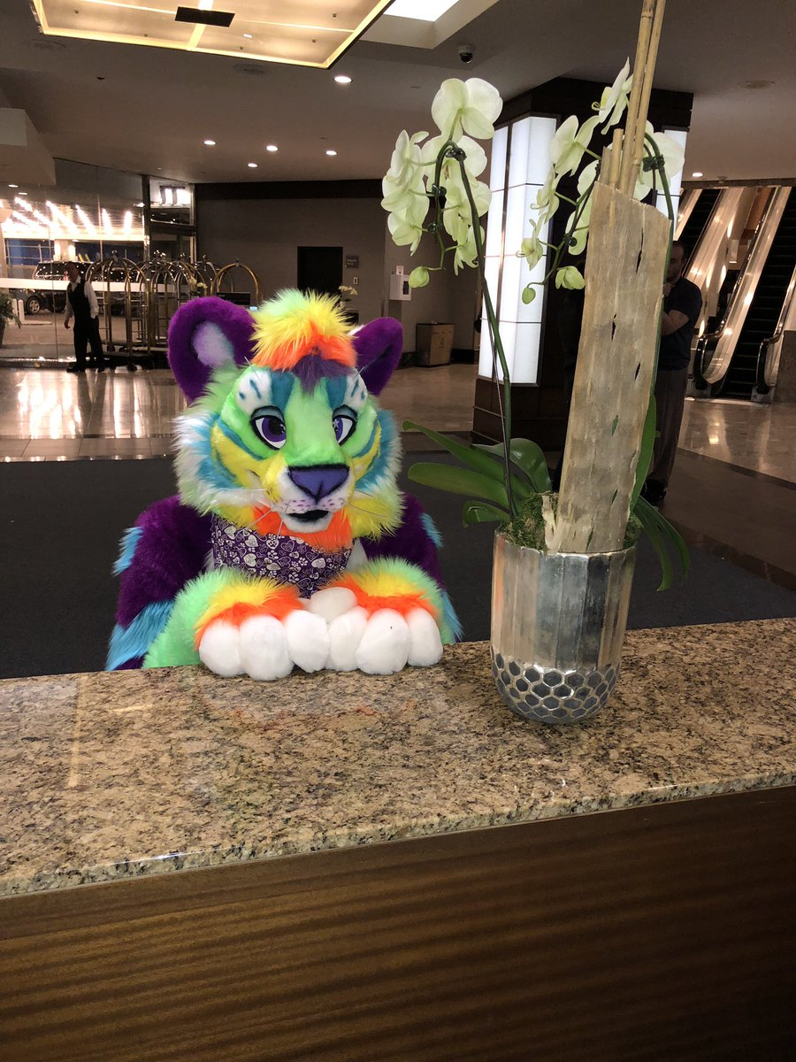 Lush Liger 🏳️‍🌈's photo on #FursuitFriday