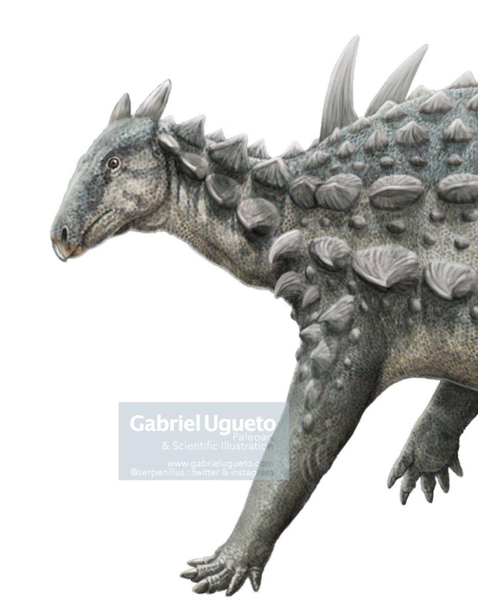 Gabriel N. U.'s photo on #FossilFriday
