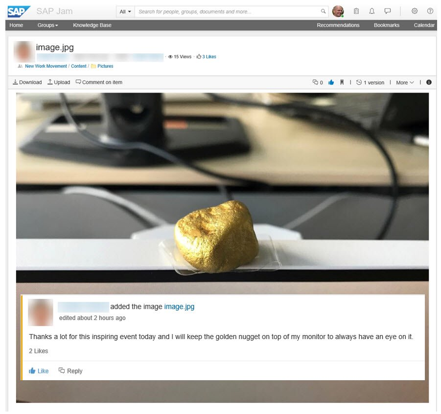 sap nuggets download