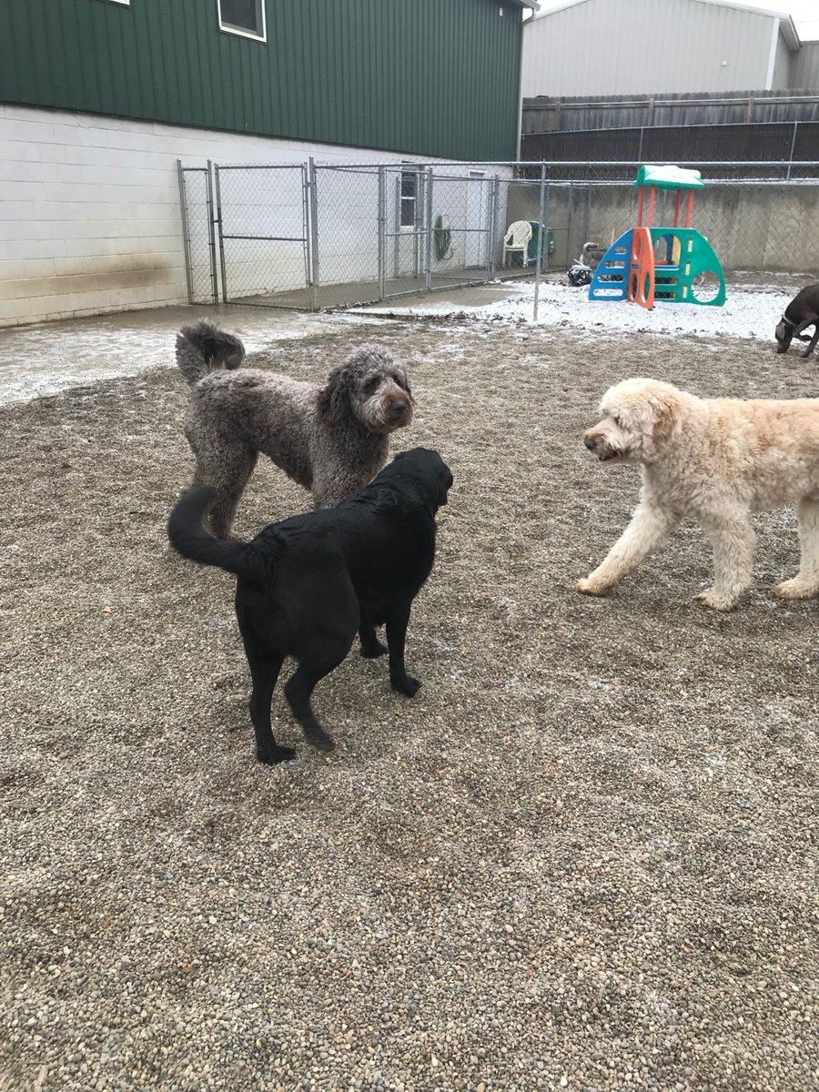 Greta, Tucker and Riley H get ready to play