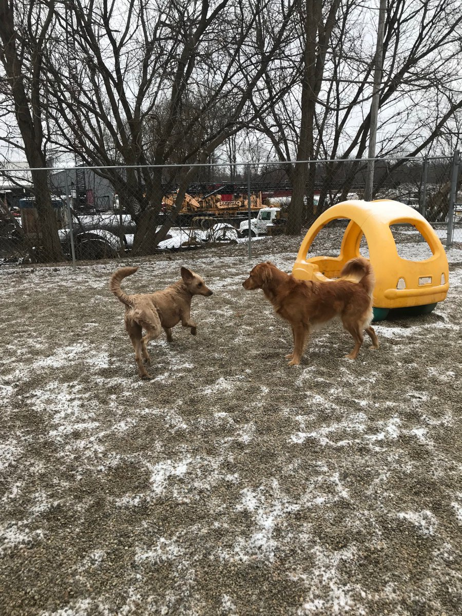 """Leeloo says """"Catch me if you can Maggie Mae!"""""""