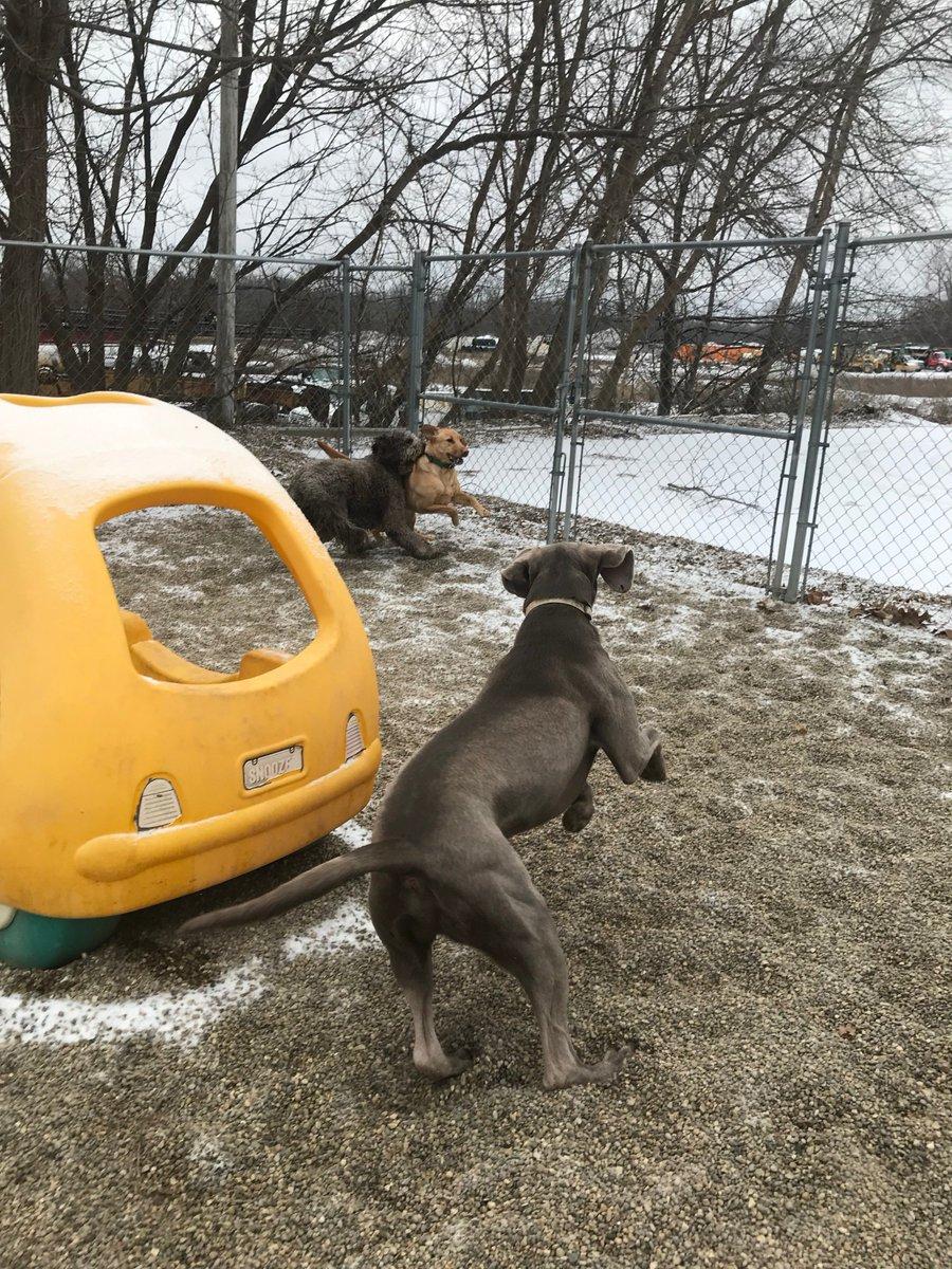 Stitch heads off Kipling and Tucker