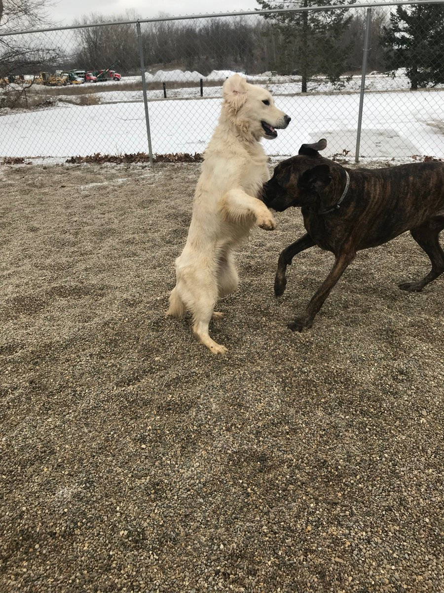 Breslin asks Heimdall to dance