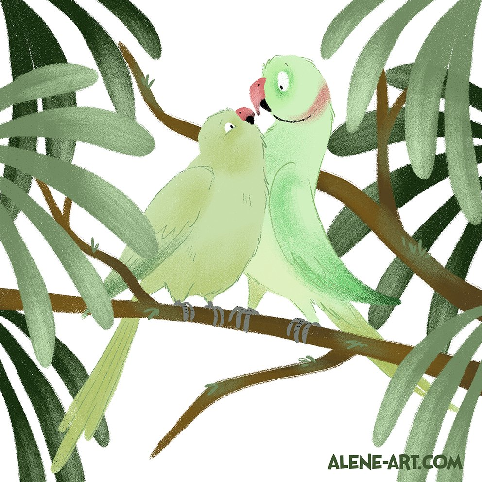 A quick pair of ringneck parrots in #teagreen for #colour_collective tonight. I&#39;m very under the weather with a sinus infection / trigeminal neuralgia / possible (please God, no) tooth abscess so I&#39;m in a little world of pain... so this is a bit rough.  #sketch #kidlitart #birds<br>http://pic.twitter.com/zXmXjObkL6