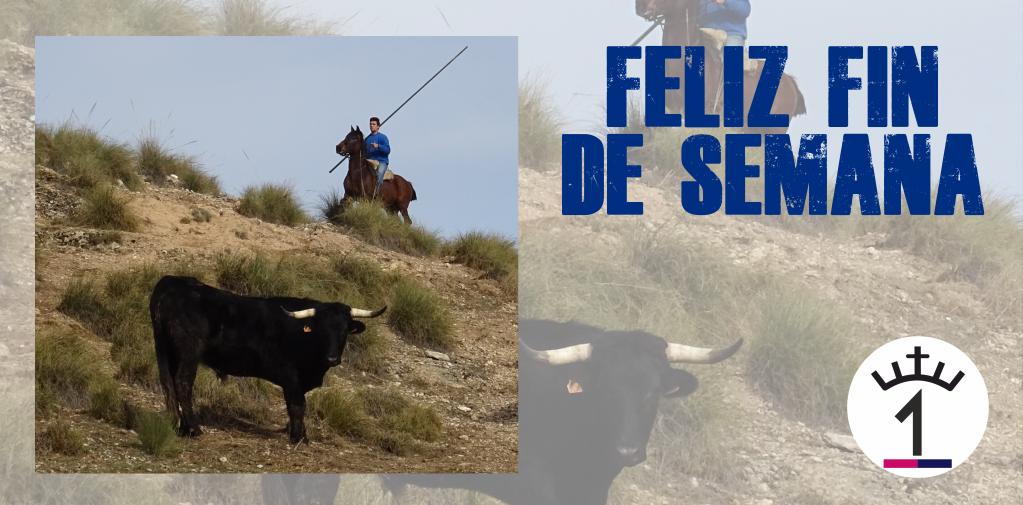 Ganadería El Uno's photo on #FinDeSemana