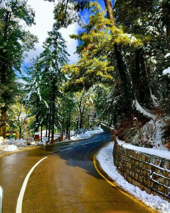 #LongLivePakistan  #VisitPakistan   A Lovely View Of Most Beautiful Hill Station Murree, Punjab, Pakistan  <br>http://pic.twitter.com/KugnlR71Sc