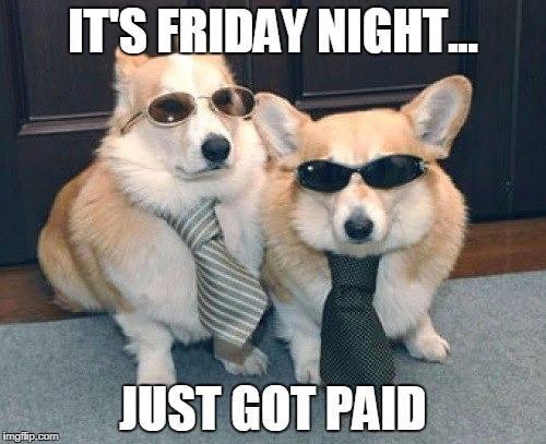 NuVet's photo on #FridayFun