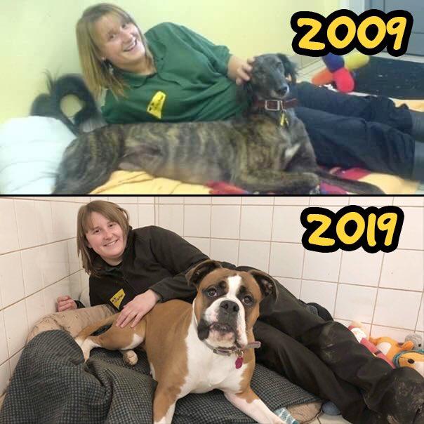 Dogs Trust Leeds's photo on #FridayFun