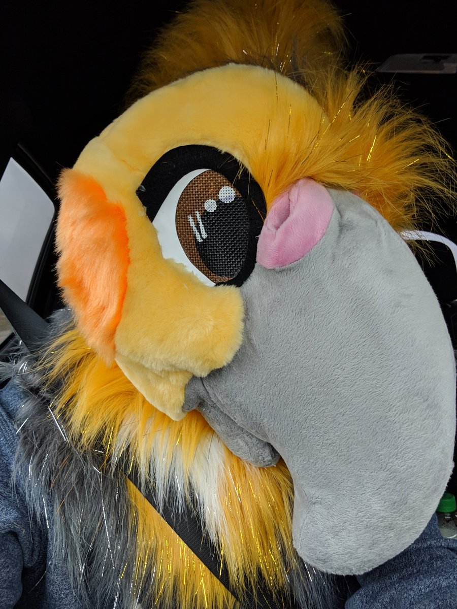 The Falco Birb | AQF's photo on #FursuitFriday