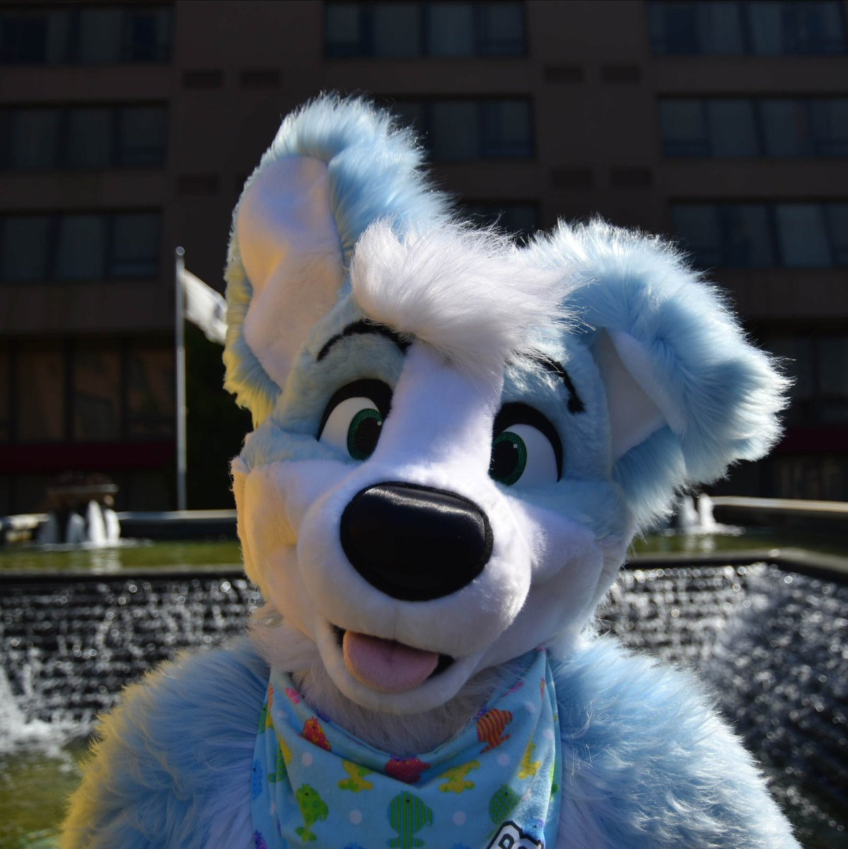 Collie Maybe's photo on #FursuitFriday