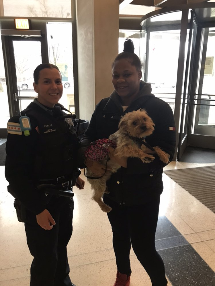 Officers reunite lost dog with its owner. <br>http://pic.twitter.com/3r6x4PLXXc