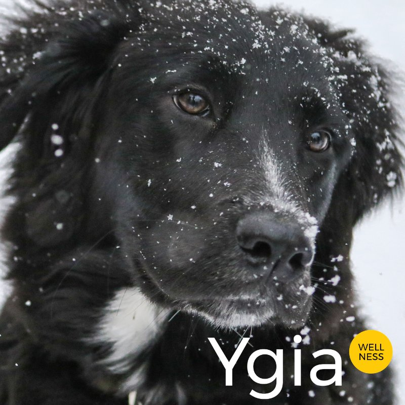 YGIAPro's photo on #FeelGoodFriday