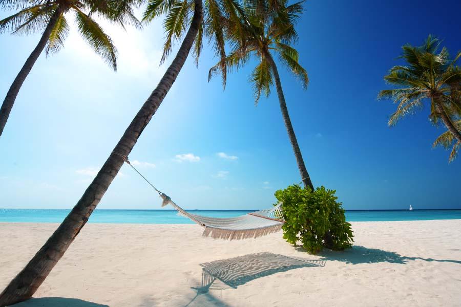 Estas son las #playas favoritas de los #turistas internacionales que visitan #México https://www.viajabonitomx.com/2017/07/playas-favoritas-turistas-mexico-viaja-bonito.html… #Tips #Viajes