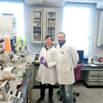 "Marco and Tang are working hard to ""dry fractions and extracts"" at #QuaveLab. This means they are evaporating the solvents, thus obtaining crude extracts, fractions & pure isolated compounds, that are bioactive plant secondary metabolites and potential novel drug leads. #phdlife"