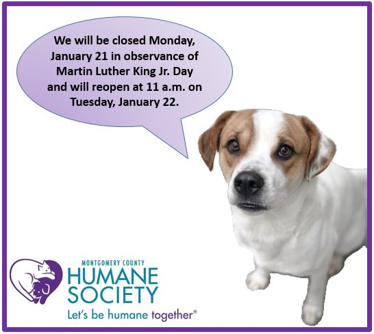 MoCoHumane photo