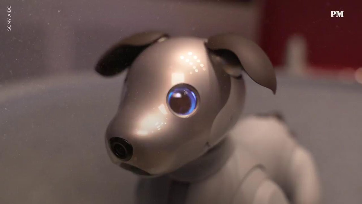 Image for the Tweet beginning: Sony's Adorable Robot Dog Is