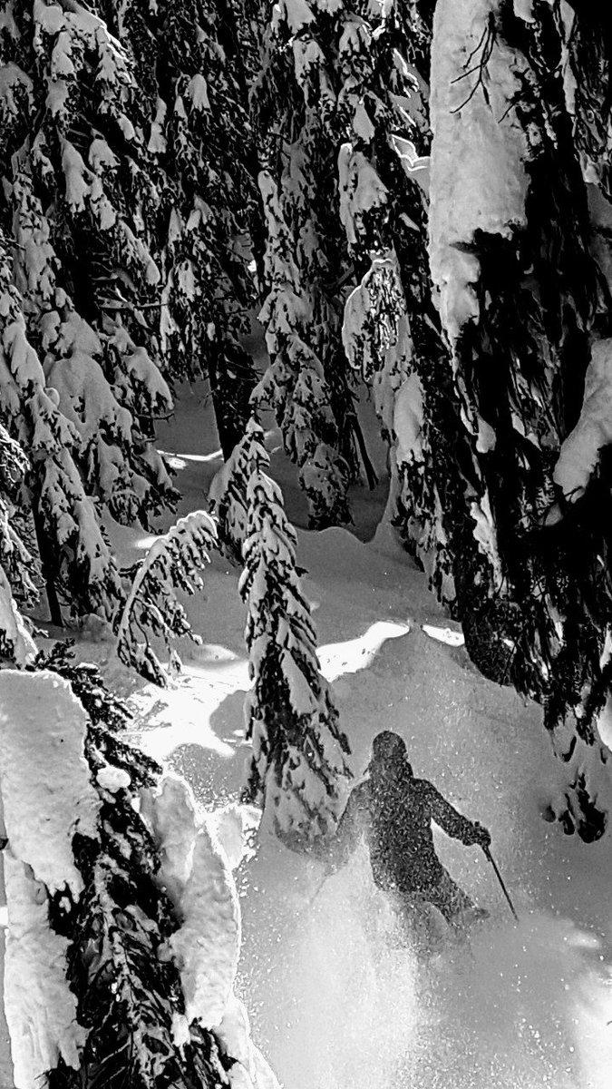 RT @GYeulett: Chasing gravity!  #skiing #powder #bigwhite #snowday https://t.co/h5wAIJICjk