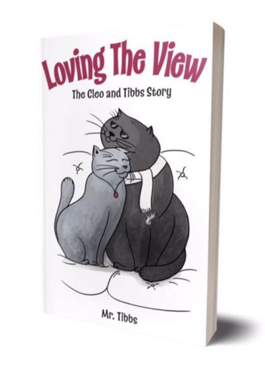Loving the View: The Cleo and Tibbs Story by Mr Tibbs https://www.amazon.com/dp/1773707256/ref=cm_sw_r_tw_dp_U_x_CCLqCbV7ZQS31 … via @amazon