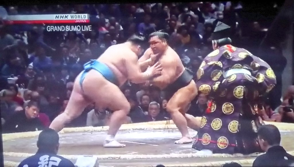 Watching sumo while I eat a burrito. Multicultural!