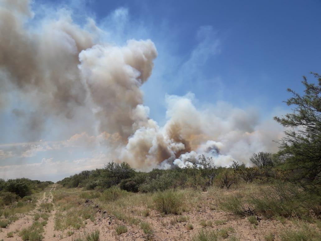 #Provinciales | Incendios controlados en La Pampa