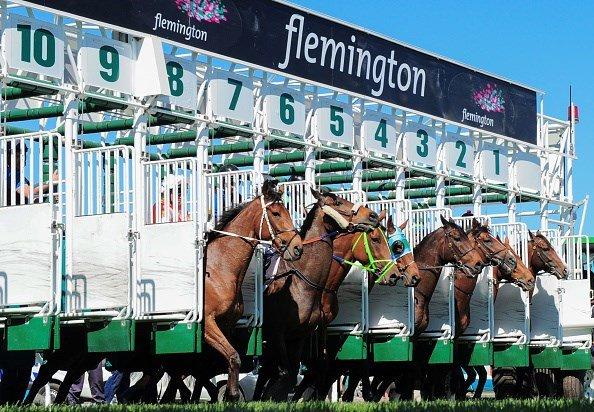 Racingbase's photo on #flemington