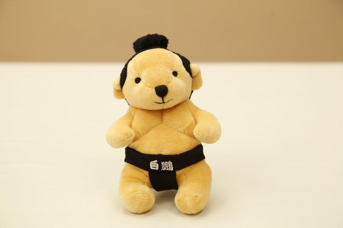<売店・土産紹介>人気の「白鵬テディベア」1,500円。 #sumo #相撲