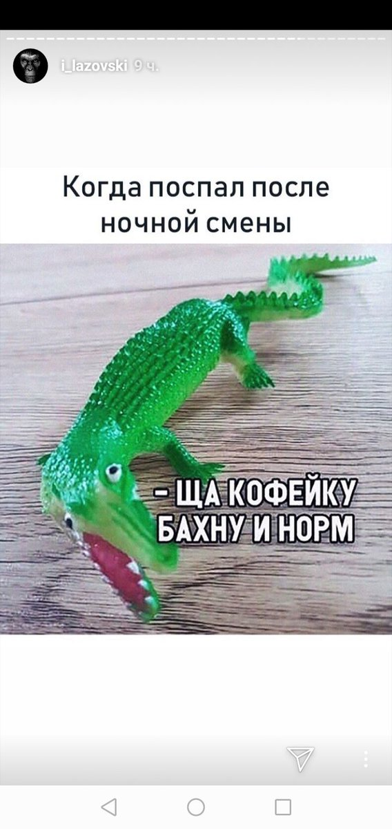 картинка с крокодилом сейчас кофейку бахну и норм как