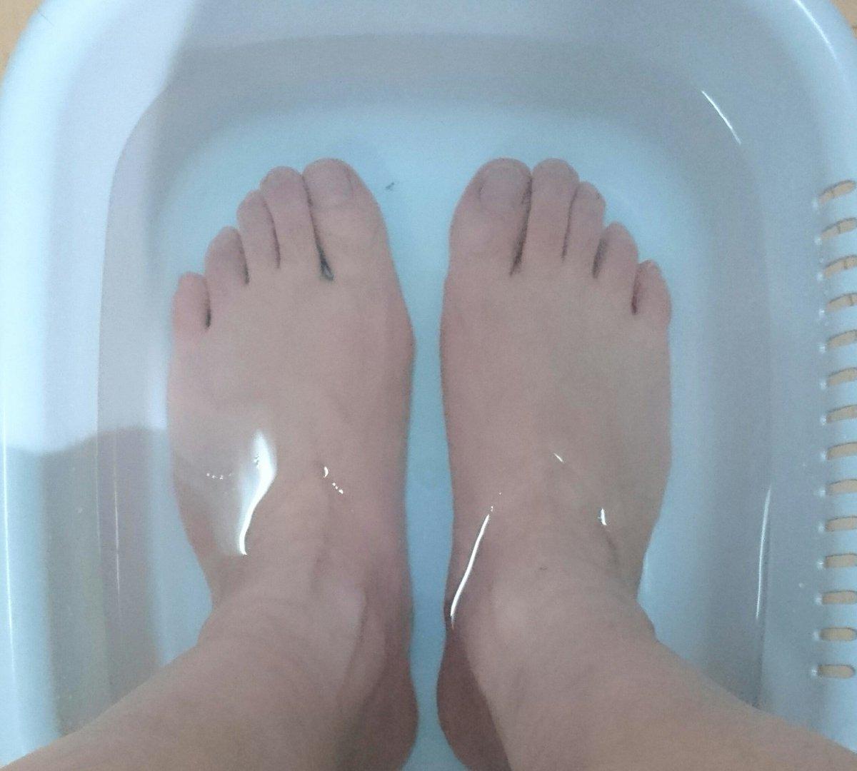 test ツイッターメディア - 今日も歩き疲れたので帰宅してからコーヒー飲みながら、自宅で足湯。100円ショップ キャンドゥで見つけた台所用の6.5Lの洗い桶。余裕で両足が入ります。安上がりで快適。 #自宅で足湯  #キャンドゥ https://t.co/pAMka15hhi