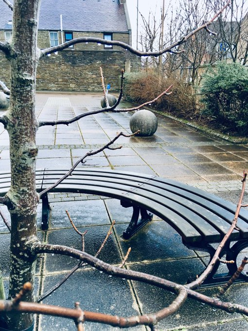 It's a cold, grey, midwinter #SaturdayMorning in Orkney and we have sleet, surely the worst of ALL the weathers Our benches are dreary and our balls are damp Roll on springtime Photo