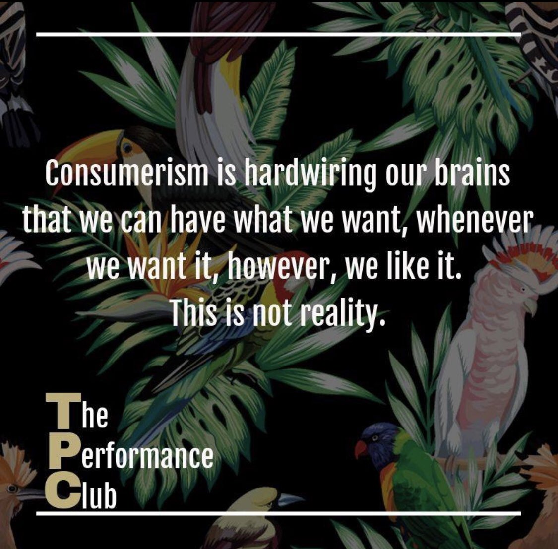 Do you truly understand, and are you fully aware of things you are engaging your brain with on a daily basis?    #performance #educateyourself #coaching #mentalhealth #livethebestlife #consumerism #harmful #fakelife #realitycheck #demands #intolerance #neuroscience