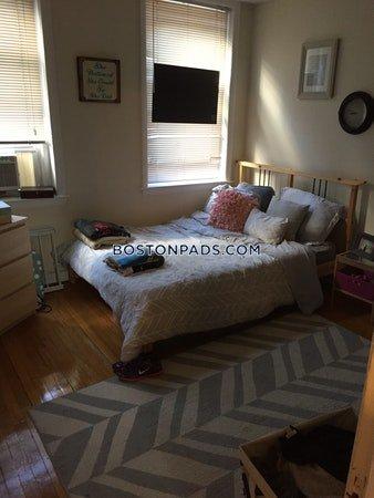 Boston Pet Apartment's photo on Brighton