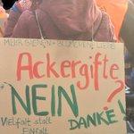 Image for the Tweet beginning: #WHES19 @Dirk_Behrendt @SoenkeHberg @GrueneFraktionB @Antje_Kapek