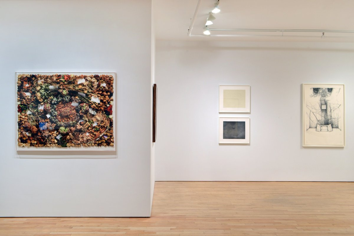 Now on view: Rock Paper Nature  Selected prints & editioned multiples by gallery artists exploring themes of nature #Baldessari, #Borofsky, #Calle, #Celmins, #Dean, #Gober, #Goode, #Guston, #Hamilton, #Kelly, #Morley, #Rauschenberg, #Rothenberg, #Serra, #Tuttle, #West, #Winters