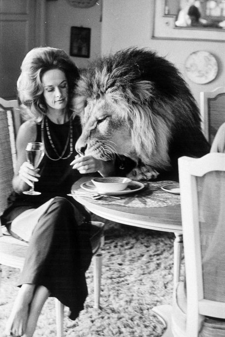 If people could be as honest as animals, what a different world it would be. Happy Birthday, Tippi Hedren.